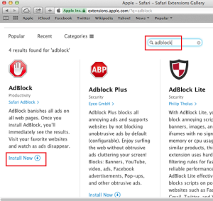 Now It will search some Adblock Extension then Select AdBlock or AdBlock  Plus and then Click on Install Now to Install this Extension on your  Browser.